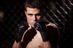 Portrait of a MMA Fighter in a cage Royalty Free Stock Image