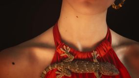 Portrait of a model in the form of a Gypsy. With a small lizard on his chest. color toning and slow motion stock footage
