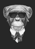 Portrait of Monkey in suit. Royalty Free Stock Photos