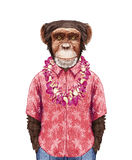Portrait of Monkey in summer shirt with Hawaiian Lei. Hand-drawn illustration, digitally colored Royalty Free Stock Images