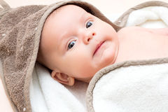 Portrait of 2 month old baby with towel. Royalty Free Stock Image