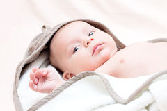 Portrait of 2 month old baby with towel. Stock Photography