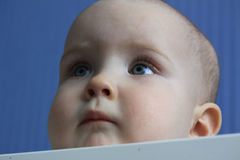 Portrait of a 11-months baby Stock Photo