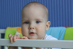 Portrait of a 11-months baby Royalty Free Stock Images