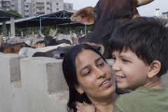 Portrait of Mother & Child at a cow shelter Stock Images