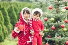 Portrait of mother and child sitting near christmas tree and eating gingerbread and drinking hot chocolate in pine park Stock Photos