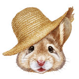 Portrait  of Mouse with straw hat. Stock Image