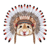 Portrait of Mouse in war bonnet. Royalty Free Stock Photography