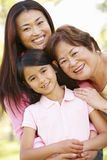 Portrait multi-generation Asian females in park Royalty Free Stock Image
