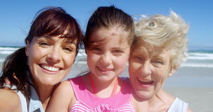 Portrait of multi generation family at beach stock video footage