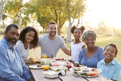 Portrait Of Multi Generation Family Enjoying Picnic In Park Together royalty free stock photo