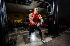Portrait of muscle man doing exercises in the gym. Sports wallpapes. Sport, workout, people, gym concept. Portrait of muscle man doing exercises in the gym stock photos
