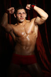 Portrait of a muscleman Royalty Free Stock Photo