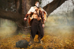 Portrait of a muscular ancient warrior with a sword. Ancient Barbarian in the woods Royalty Free Stock Images