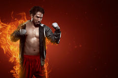 Portrait of muscular asian male boxer Royalty Free Stock Image
