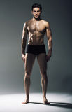 Portrait of the muscular handsome guy Stock Images