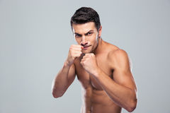 Portrait of a muscular male fighter Royalty Free Stock Photo