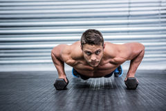 Portrait of muscular man doing push-ups with dumbbells Royalty Free Stock Photos