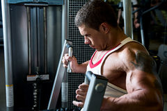 Portrait of a muscular man in the gym. Royalty Free Stock Image