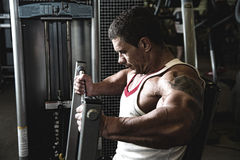 Portrait of a muscular man in the gym Royalty Free Stock Photography