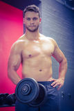 Portrait of muscular man lifting dumbbell Stock Image