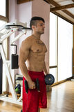 Portrait of a muscular man lifting weights at the gym Stock Photography