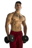 Portrait of a muscular man lifting weights Stock Images