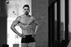 Portrait Of A Muscular Sexy Man In Underwear Stock Images