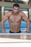 Portrait Of A Muscular Sexy Man In Underwear Royalty Free Stock Image