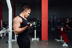 Portrait of a muscular young man lifting weights on gym. Background Royalty Free Stock Photos