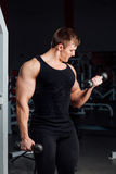 Portrait of a muscular young man lifting weights on gym background. Exercise on the biceps Stock Photo