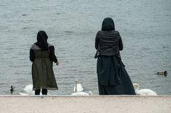 Portrait of muslim women back view gibing bread to the duck and swan in border lake royalty free stock photography