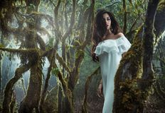 Portrait of a mysterious woman in the jungle. Portrait of a mysterious young woman in the jungle Royalty Free Stock Image