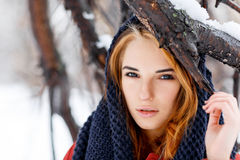 Portrait of a natural, young and beautiful  woman in a winter pa Stock Image