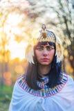 Portrait of Nefertiti at sunset Stock Images