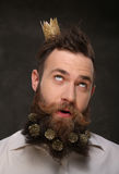Portrait of new year man, long beard with Christmas cones Stock Photos