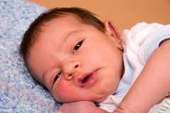 Portrait of a Newborn Royalty Free Stock Photography
