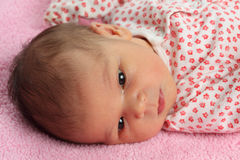 Portrait of newborn baby Royalty Free Stock Photography