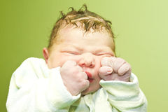 Portrait of a newborn baby Royalty Free Stock Photos