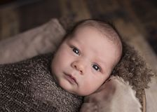 Portrait of newborn baby Stock Photos