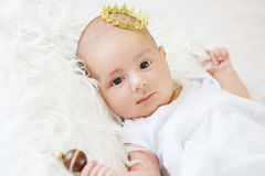 Portrait of a newborn baby boy Royalty Free Stock Images