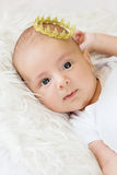 Portrait of a newborn baby boy Royalty Free Stock Photography