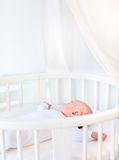 Portrait of a newborn baby boy in white round crib Royalty Free Stock Photos