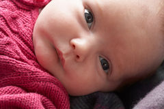 Portrait Of Newborn Baby Girl Royalty Free Stock Photo