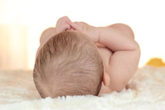 Portrait of a newborn baby lying on bed with back of head Royalty Free Stock Photos