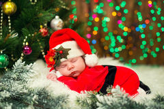 Portrait of newborn baby in Santa clothes lying under Christmas tree. Stock Images