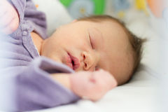 Portrait of newborn baby sleeping Stock Images
