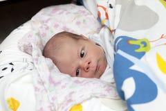 Portrait of newborn Stock Photo