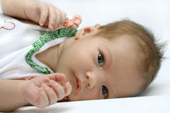Portrait of the newborn girl. Wrapped up in diapers Stock Photo