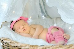 Portrait of a newborn girl. In pink clothes Royalty Free Stock Photo